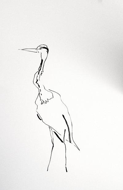 Murin-An Sketch02 Heron