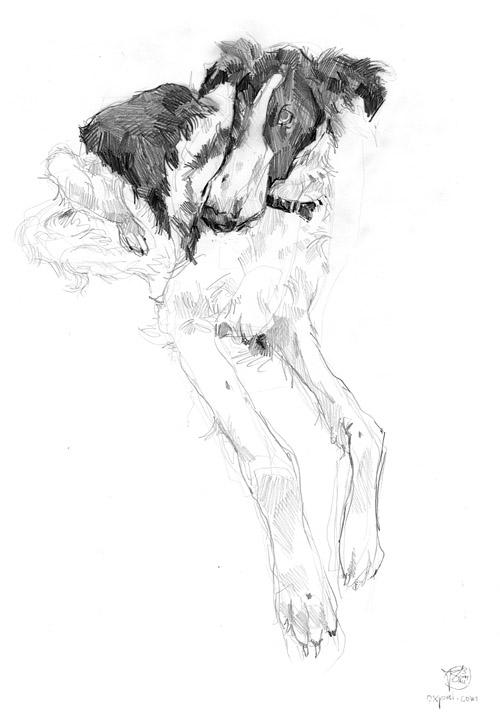 Buyan - Pencil Sketch