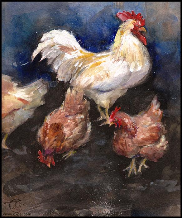 Chickens!  Watercolor