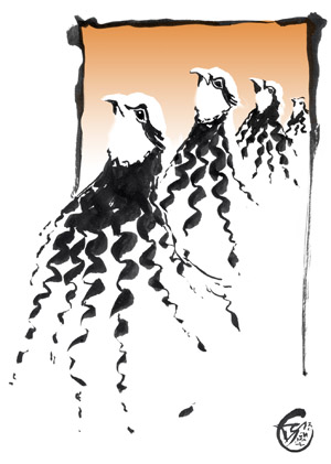 Fractals, illustration, Alectoris Rufa
