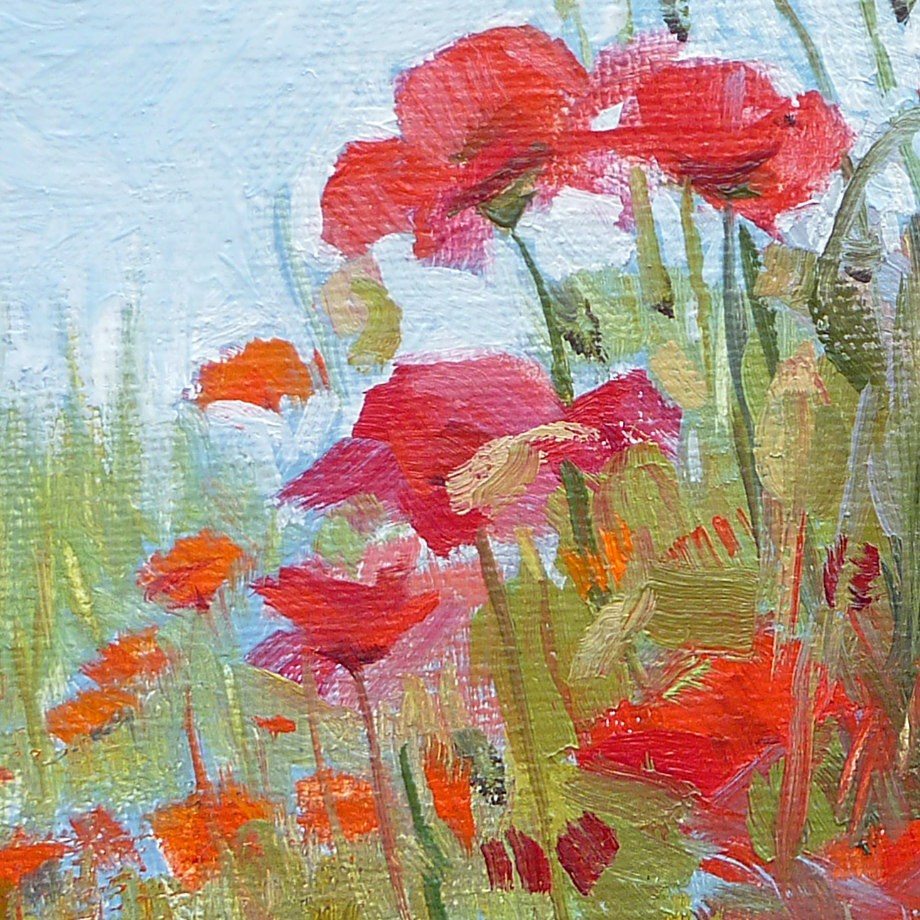 Poppy flowers poster thomas schmall poppy flowers poster mightylinksfo