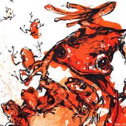 Scarlet Frogs