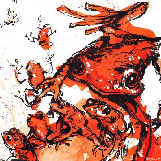 Scarlet Ink Frogs