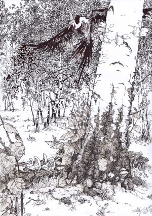 Ink Drawing of Forest
